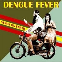 dengue_fever_venus_on_earth
